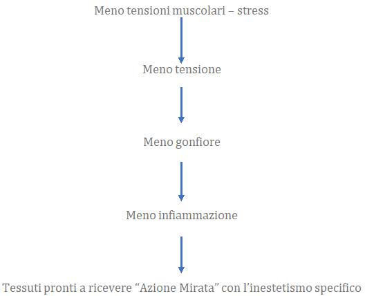 protocollo corpo estetha